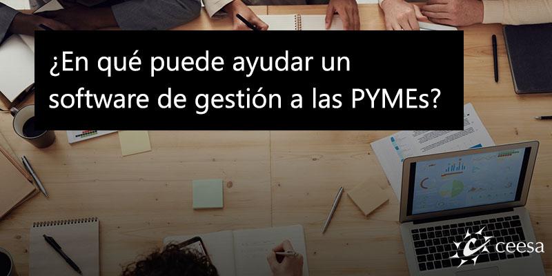 software de gestion pymes